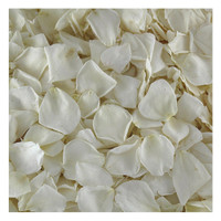 Bridal White/ Ivory Preserved Freeze-dried Rose Petals - Fragrant- 30 cups from Flyboy Naturals