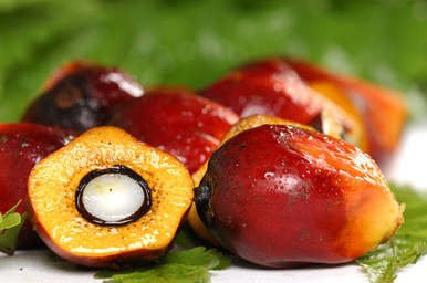 Palm Oil (Sustainable Harvest) (7lbs)