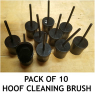 Set of 10 Black Hoof Oiling Brush with Container