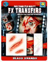 GLASS SHARDS 3D FX TRANSFERS