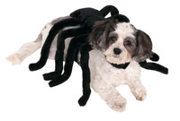 spider dog costume australia