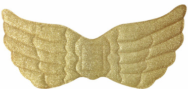 Fancy dress wings