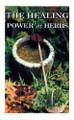 "Healing Power of Herbs ""CLOSEOUT"""