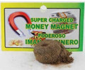 Super Charged Money Magnets