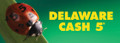 Cash 5 - Delaware