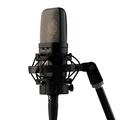 Warm Audio WA-14 Microphone