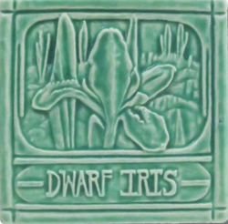 Whistling Frog Dwarf Iris Tile 4x4