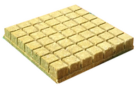 Grodan Rockwool 36/40 AO Blocks for seedlings - 49 Blocks