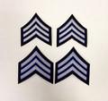 SSA LEVEL III  Stripes