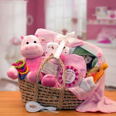 Precious Newborn gift basket pink