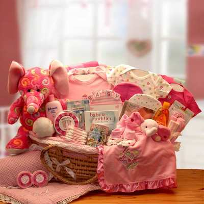 Adorable Moses Baby Gift Basket