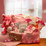 Adorable Moses Baby Gift Basket - Pink