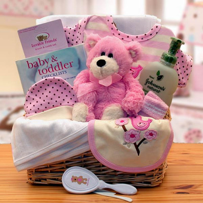 Newborn Organic Baby Gift Basket (Pink or Blue)