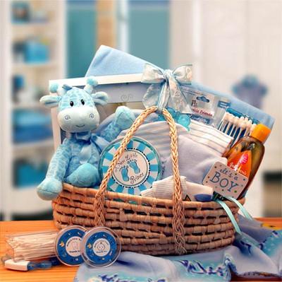 Moses Baby Gift Basket - Boy