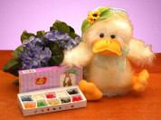Easter Musical Ducky Gift Set