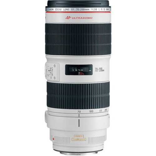 Canon EF 70-200mm f/2.8 IS II USM L Series