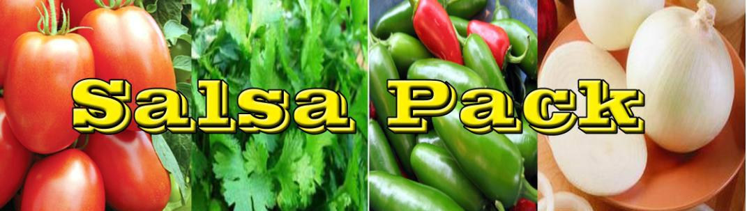 salsa-banner.jpg
