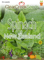 Spinach - New Zealand (35+ seeds)