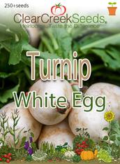 Turnip - White Egg (250+ seeds)