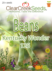 Bean - (Bush) - Kentucky Wonder 125 (25+ seeds)