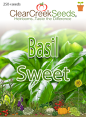 Basil - Sweet (250+ seeds)