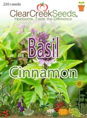 Basil - Cinnamon (250+ seeds)