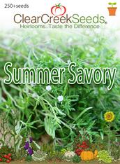 Summer Savory (250+ seeds)