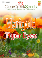 "French Marigold ""Tiger Eyes"" (100+ seeds)"