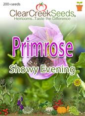 "Primrose ""Showy Evening"" (200+ seeds)"