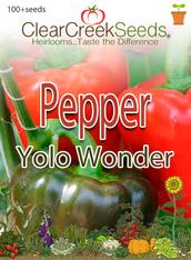 Pepper  Sweet– Yolo Wonder (100+ seeds) JUMBO PACK