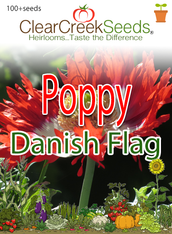 "Poppy - ""Danish Flag"" (100+ seeds)"
