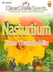 "Nasturtium (Dwarf) - ""Tom Thumb Mix"" (20+ seeds)"