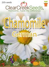 German Chamomile (250+ seeds)