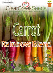 Carrot - Rainbow Blend (300+ seeds)