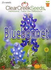 Bluebonnet (25+ seeds)