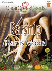 Parsnip (250+ seeds)