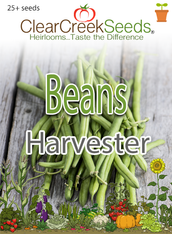 Bean (Bush) Harvester (25+ seeds)