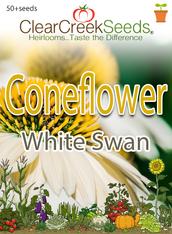 Coneflower - White Swan (50+ seeds)