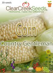 Corn – (Sweet) Country Gentleman (30+ seeds)