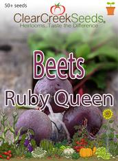 Beets - Ruby Queen (50+ seeds)