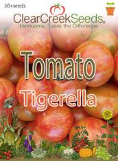 Tomato - Tigerella (50+ seeds)