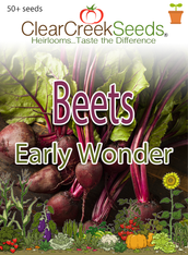 Beets Early Wonder (50+ seeds)