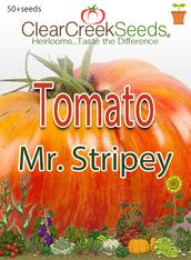 Tomato Seeds - Mr. Stripey (50+ seeds)