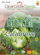 Broccoli - Calabrese (200+ seeds)