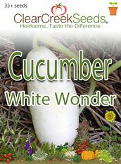 Cucumber - White Wonder (35+ seeds)