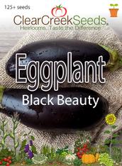 Eggplant - Black Beauty (125+ seeds)