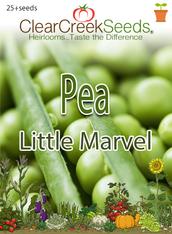 Pea Shelling - Little Marvel (25+ seeds)