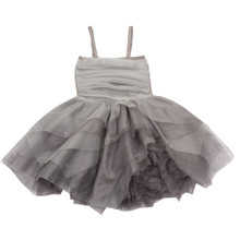 Ooh La La Carrie Silver Dress