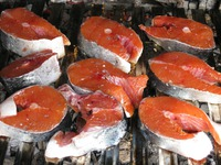 Salmon on the Grill, a Summer Favorite