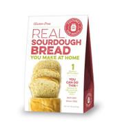 Gluten-Free Sourdough Starter